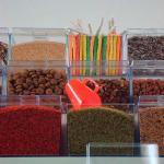 Expositor de alimentos em acrílico